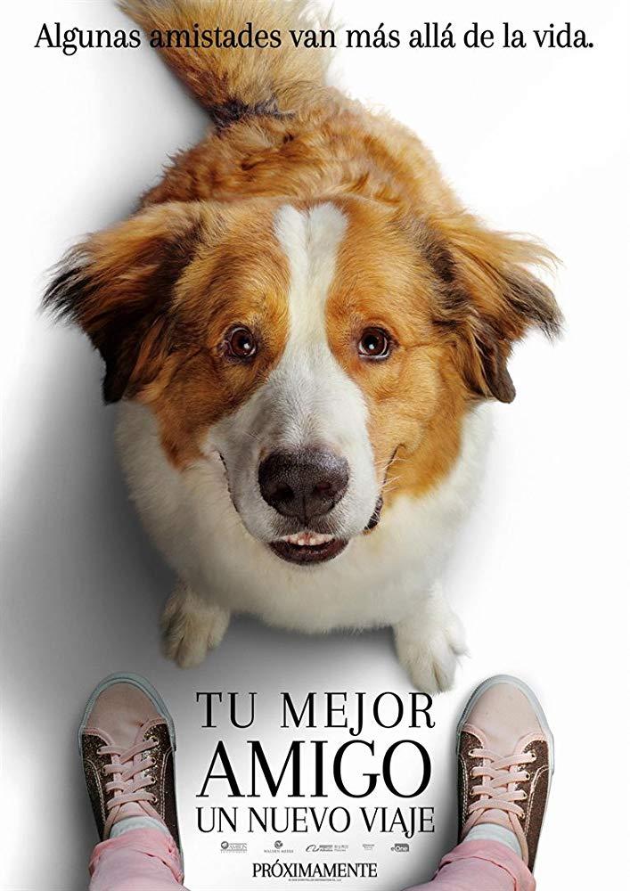 Watch Movie a-dogs-journey