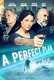 Watch Movie a-perfect-plan