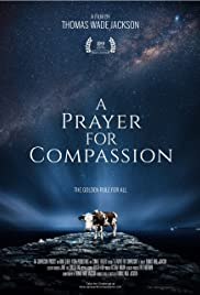 Watch Movie a-prayer-for-compassion
