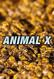 Watch Movie animal-x-season-1