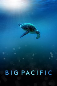 Watch Movie big-pacific-season-1