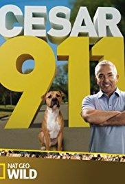 Watch Movie cesar-911-season-4