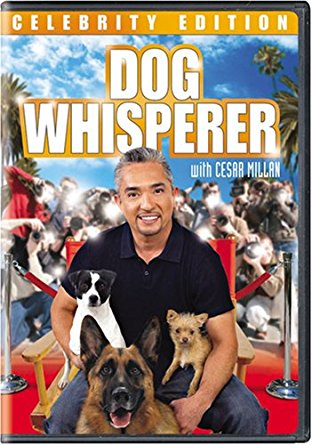 Watch Movie dog-whisperer-with-cesar-millan-season-8