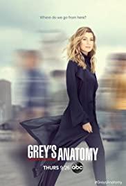 Watch Movie grey-s-anatomy-season-17