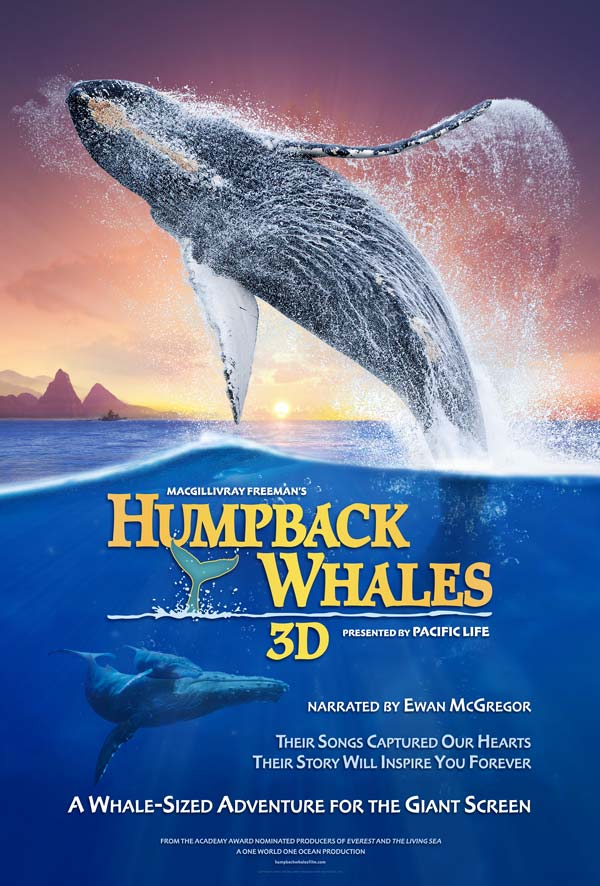 Watch Movie humpback-whales