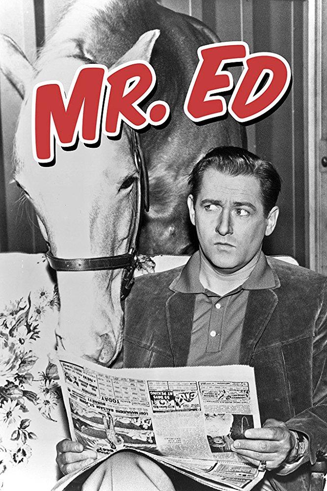 Watch Movie mister-ed-season-1