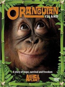Watch Movie orangutan-island-season-1