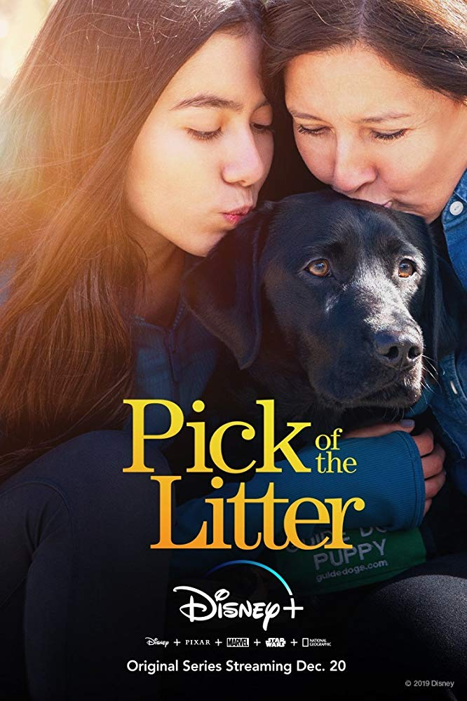 Watch Movie pick-of-the-litter-season-1
