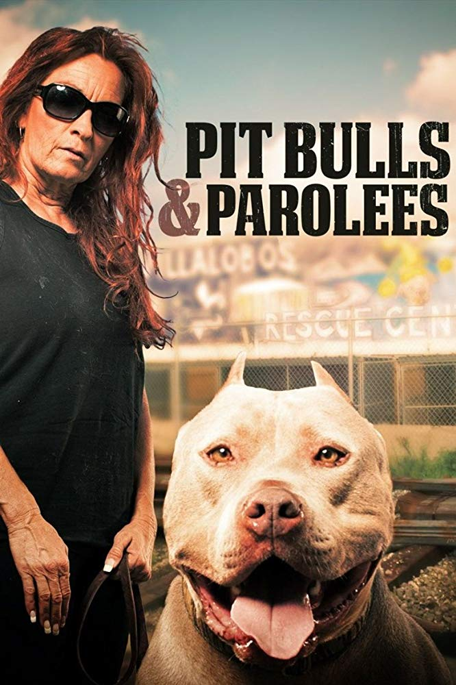 Watch Movie pit-bulls-and-parolees-season-2