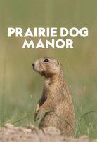 Watch Movie prairie-dog-manor-season-1