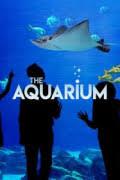 Watch Movie the-aquarium-season-1