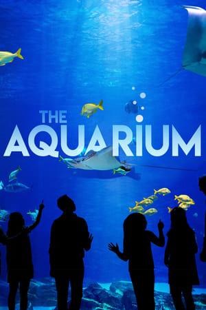 Watch Movie the-aquarium-season-2