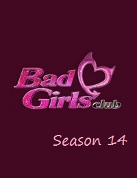 Watch Movie the-bad-girls-club-season-14