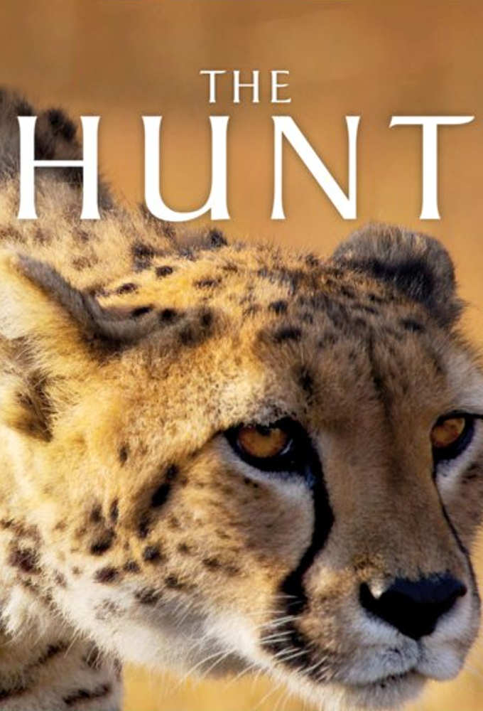 Watch Movie the-hunt-season-1