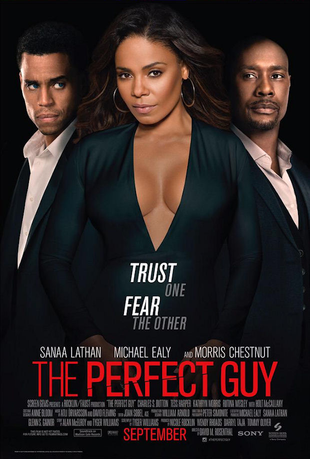 Watch Movie the-perfect-guy