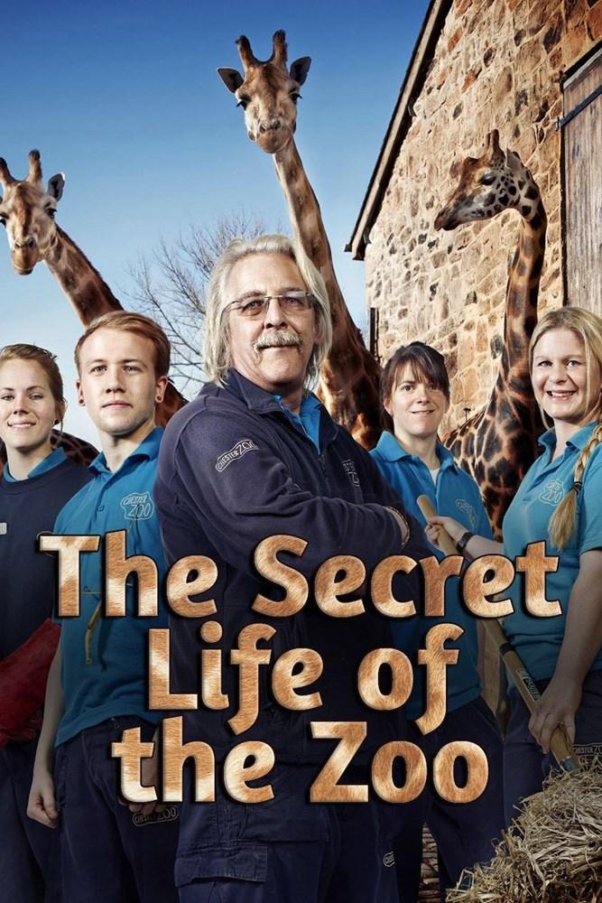 Watch Movie the-secret-life-of-the-zoo-season-2