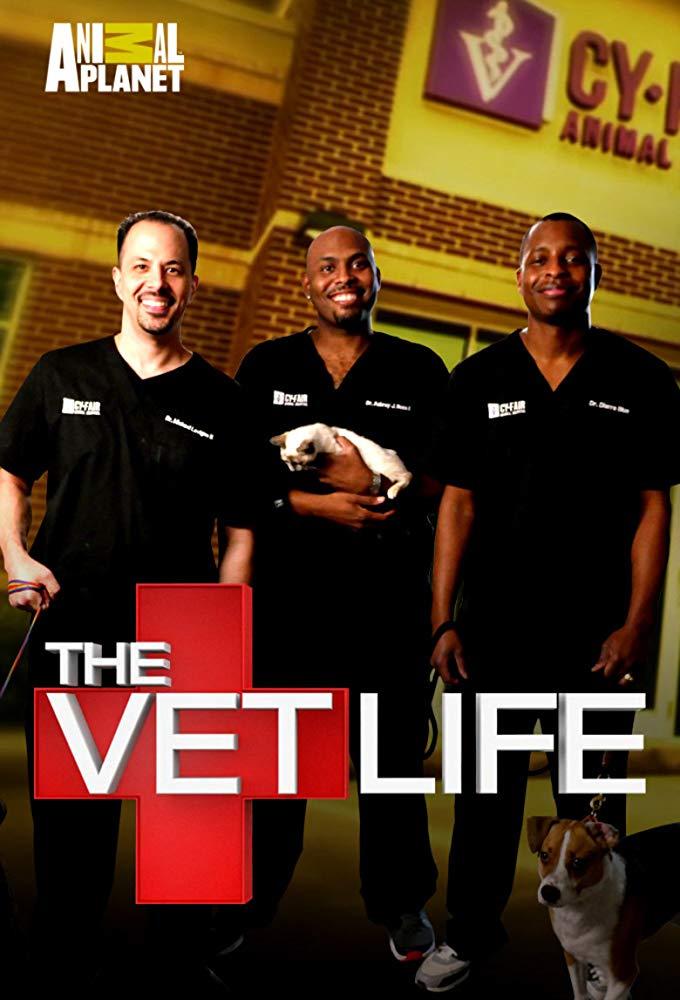 Watch Movie the-vet-life-season-4