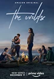 Watch Movie the-wilds-season-1