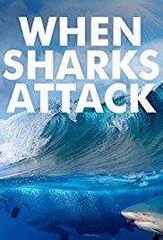 Watch Movie when-sharks-attack-season-5